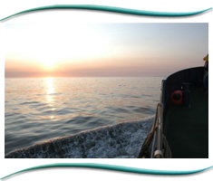 Gemini Commercial Marine Charters Moray Firth